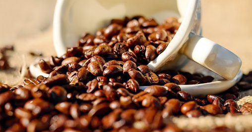 Kaffee gesund - Kaffeebohne