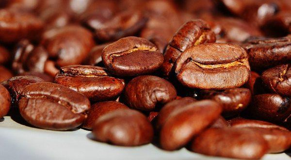Kaffee gesund - Kaffeebohnen