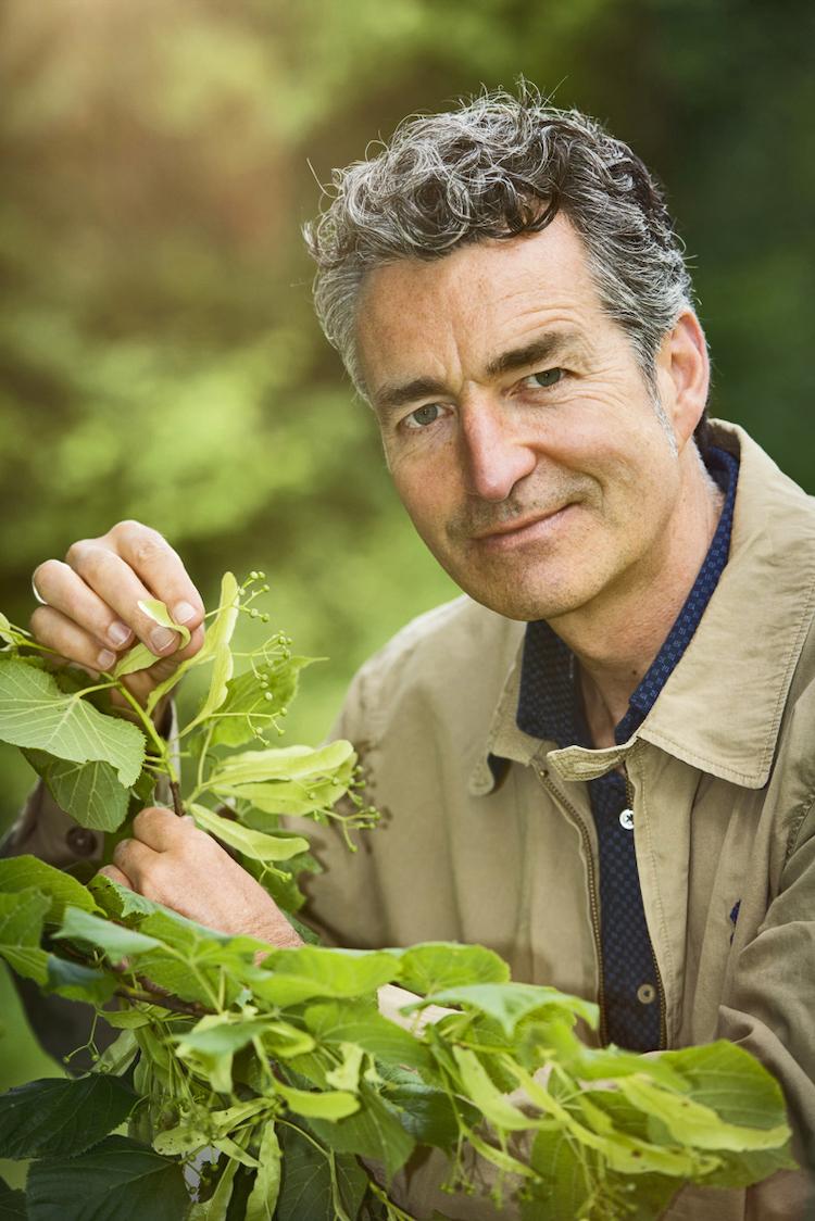 eßbare-wildpflanzen-Dr.-Markus-Strauss-Copyright-Bernd-Schönfelder