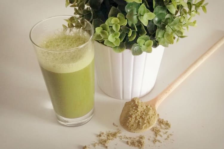 vegane-proteinpulver-kürbisshake