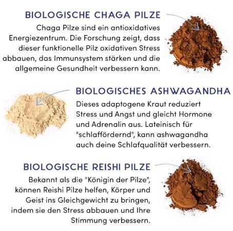 Immunssystem stärken mit Pilzen
